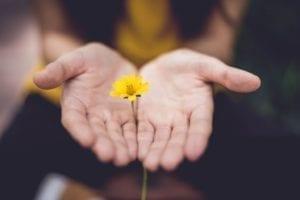 Gingermood - Blog - Vergeven