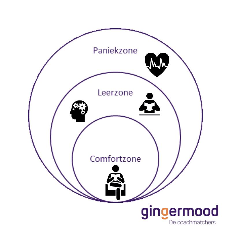 comfortzone, leerzone, paniekzone, uitdaging, persoonlijke groei